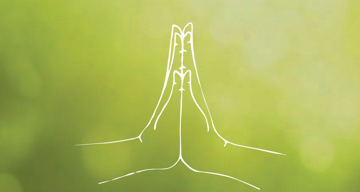 Cosa significa Namaste' ?